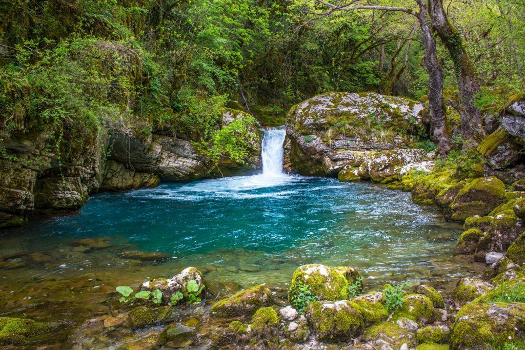 Φυσική Πισίνα περιτριγυρισμένη από πλούσια βλάστηση/Natural Pool surrounded by rich plantation